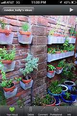 hanging plants a new fun way garden ideas pinterest