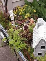 diy succulent miniature fairy garden ideas