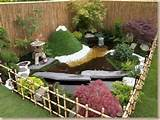 backyard landscaping designs with bonsai tree ideas