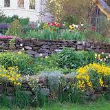 spring bulbs with summer and fall blooming perennials for extended