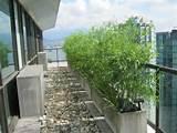 ... Artificial Bamboo Privacy Screen Condo Balcony Landscaping Ideas