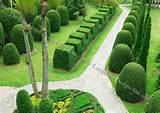 Tropical Formal Garden Ideas