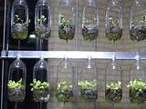 44 Awesome Indoor Garden And Planters Ideas | Butterbin