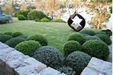 landscape designs for creative and sophisticated garden ideas fox