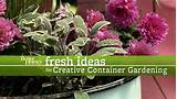 creative gardens containers idea book covers