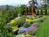 Ideas For Kids In Garden Design : Basic Backyard Landscaping Ideas ...