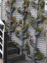 Climbing Up: 10 Innovative Vertical Garden Ideas - Urban Gardens
