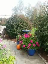 fall patio garden ideas pinterest