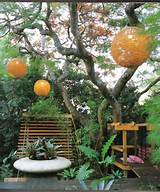 Rustic Small Garden Ideas and Designs with Greens : Cool Small Garden ...
