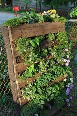 Pallet Garden Thanks Pinterest