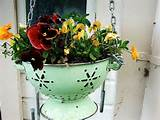 gardening ideas colander gardening upcycling unique gardening ideas