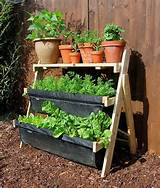 balcony gardening | For the Home | Pinterest