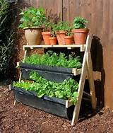 balcony gardening for the home pinterest