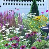Butterfly Garden | Gardening ideas | Pinterest