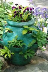 hosta fun teal garden ideas shades garden teal strawberry