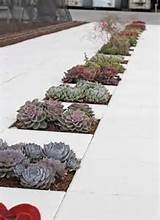 succulent void paving repinned on toby designs