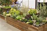 raised bed herb and flower garden garden pinterest