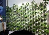 Perfect Vertical Gardening Ideas | 240606 | Home Design Ideas