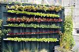 Insanely Creative Vertical Garden Ideas (13)