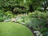 curved flower bed back yard landscape design