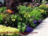 Garden Sense: Garden Design I - Getting Started with a Plan