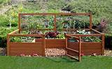 17 photos of the small vegetable garden ideas for limited space