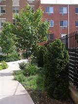 Creative Garden Edging Ideas http://www.pic2fly.com/Creative+Garden ...