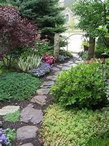 side garden - garden designs - decorating ideas - rate my space ...