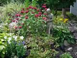 Clarence butterfly garden | Buffalo-NiagaraGardening.com