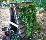 wood pallets ideas pergola for plants pallets designs