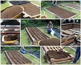 pallet garden designs - Google Search | Pathway ideas | Pinterest