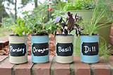 This DIY Kitchen Herb Garden is a great upcycled gardening project ...