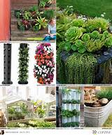 small space gardening ideas garden ideas pinterest