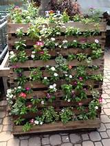 DIY Balcony Vertical Garden Ideas | stuff to do in a house | Pinterest