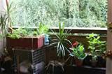 wonderful small apartment balcony garden ideas 800 x 533 224 kb