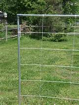 Square Foot Garden Goodness: Trellis is Done - Nylon string trellis