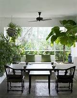 Minimalist Design for Indoor Garden Ideas