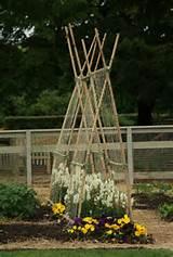 garden trellis ideas | Trellis | Pinterest