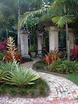for rustic pergola in a msouth florida backyard tropical landscape