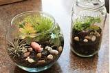 summer craft for kids make a mini terrarium marin mommies