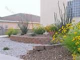 pin by landscape design site on southwest landscaping pinterest