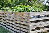 gardening ideas for your garden source diy pallet gardening ideas