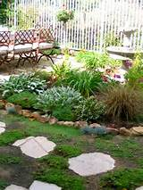 Fountain garden with low water plants | Eden Makers Blog by Shirley ...