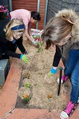 Holidays gardening ideas for kids