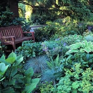 shade gardening 101