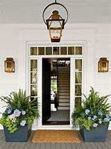 front door planters flower pots ferns sweet potato vine hydrangeas