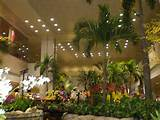 Charming Indoor Gardens On Garden With Indoor Gardens – Greenhouses ...