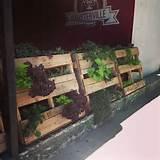 Pallet Garden ideas | Gardening | Pinterest