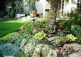 Bennington Heights Garden : Residential Gallery : Urban Garden