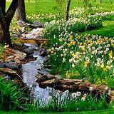 small backyard landscaping garden ideas pinterest